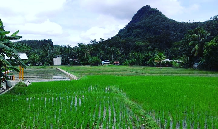 Album : inilah Desa Kami